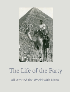 The Life of the Party Book Review