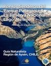 Por Los Senderos Del Parque Patagonia  La Reserva Nacional Lago Jeinimeni