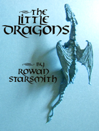 The Little Dragons book