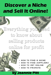 Discover a Niche and Sell It Online ebook