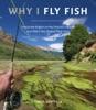 Why I Fly Fish