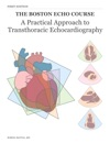 A Practical Approach To Transthoracic Echocardiography