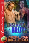 Enslaved By A Brute Sold 4