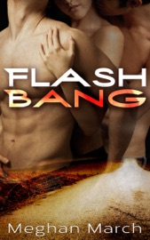 Flash Bang PDF Download