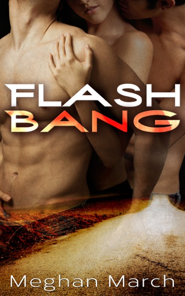 Flash Bang - Meghan March book cover