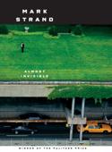 Almost Invisible Book Cover