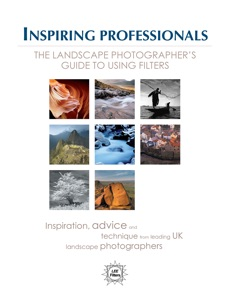 Inspiring Professionals Book Cover