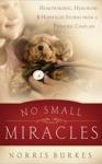 No Small Miracles