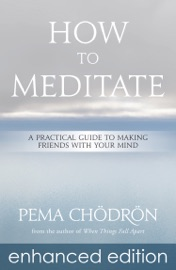How To Meditate Enhanced Edition