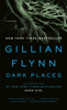 Gillian Flynn - Dark Places  artwork