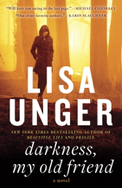Darkness, My Old Friend - Lisa Unger book summary