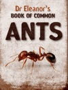 Dr Eleanors Book Of Common Ants