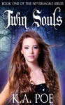 Twin Souls Nevermore Book 1