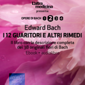 I 12 Guaritori e altri rimedi (ebook + audiolibro)