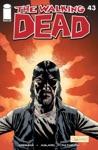 The Walking Dead 43