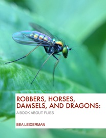 Robbers Horses Damsels And Dragons