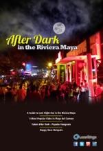 After Dark In The Riviera Maya: A Guide To Late Night Fun In The Riviera Maya