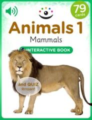 Animals 1 – Mammals