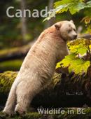Canada Wildlife in BC