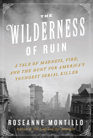 The Wilderness of Ruin