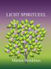 Marten Brinkhuis - Licht Spiritueel artwork