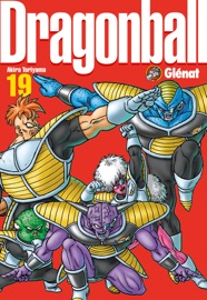 DRAGON BALL PERFECT EDITION TOME 19