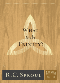 What Is the Trinity? book