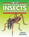 All About New Zealand Insects And Other Creepy-Crawlies