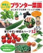 野菜とハーブのプランター菜園