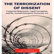 The Terrorization Of Dissent