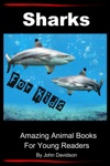 Sharks For Kids - Amazing Animal Books For Young Readers