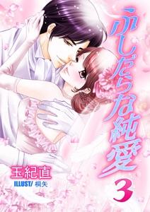 ふしだらな純愛・3 Book Cover