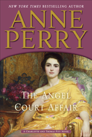 The Angel Court Affair book