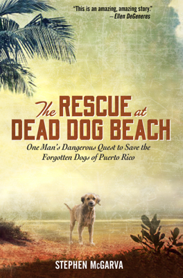 The Rescue at Dead Dog Beach - Stephen McGarva book