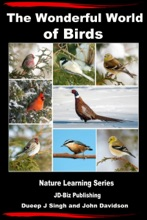 The Wonderful World Of Birds: How To Make Friends With Our Feathered Friends