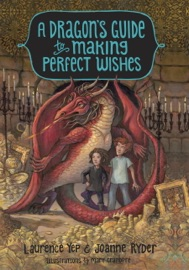 A Dragon S Guide To Making Perfect Wishes