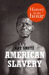American Slavery History In An Hour