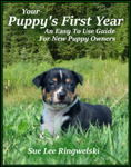 Your Puppy's First Year