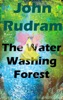 The Water Washing Forest