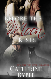 Before the Moon Rises book