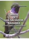 Birds Of San Salvador Bahamas