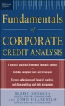 Standard  Poors Fundamentals Of Corporate Credit Analysis
