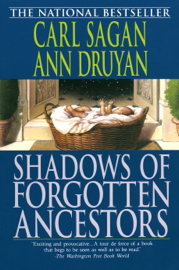 Shadows of Forgotten Ancestors