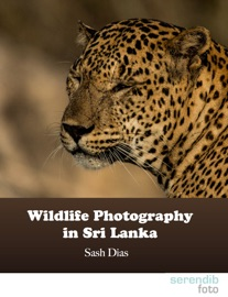 WILDLIFE PHOTOGRAPHY IN SRI LANKA