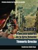 Temoris Grecko - Canás. Francotiradores de la Siria Rebelde ilustración
