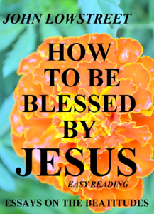 How To Be Blessed By Jesus Book Review