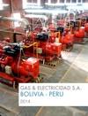 Gas  Electricidad SA