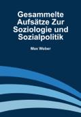Gesammelte Aufsätze zur Soziologie und Sozialpolitik