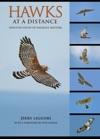 Hawks At A Distance