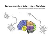 Interessantes über das Gehirn